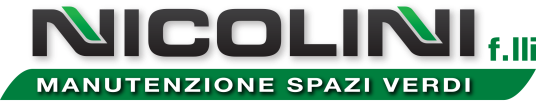 Logo_NICOLINI.png
